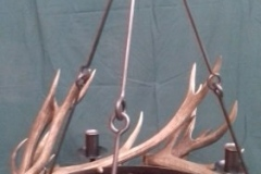 Antler chandelier 5