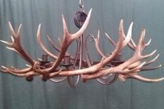 Antler chandelier 1