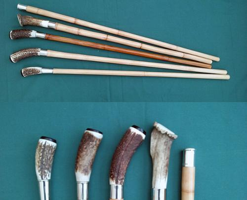 Antler Show Canes - from £60.00